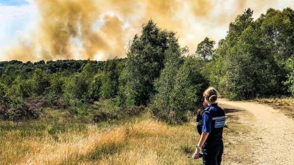 buy apple developer account:英国萨里大火伸张40公顷100多户住民被疏散