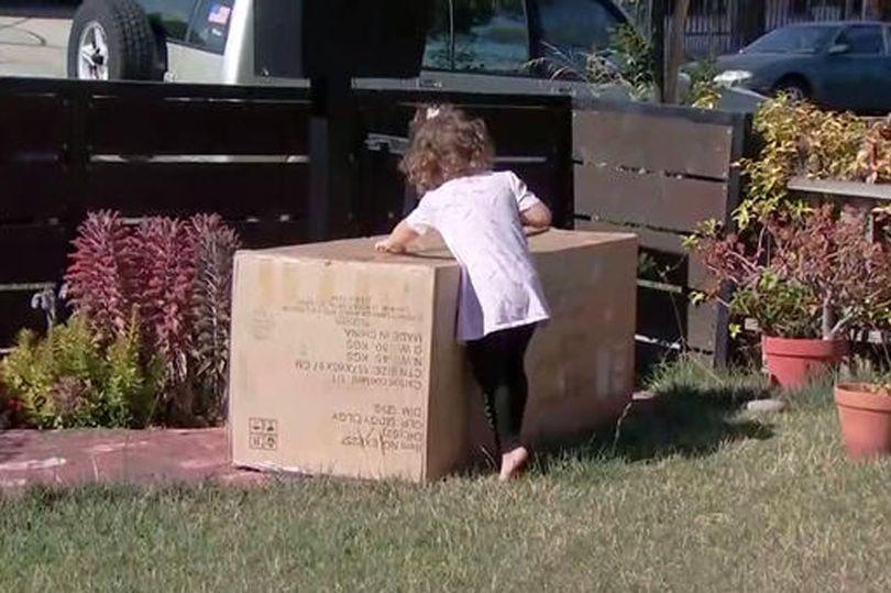 美国2岁女孩玩一会手机网购了沙发 价值3042元人民币