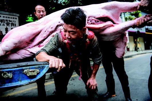 """最后的""""背猪工"""":十七年背十万头猪 养活一家七口"""