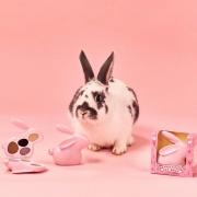 彩妆升级创意立体兔眼影盘