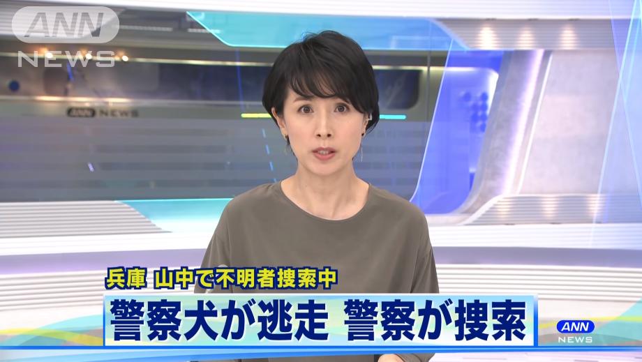 日本警犬寻找失踪职员时失踪 40名警员征采2天仍未果 第3张