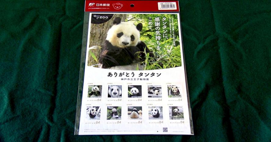 """旅日20年熊猫将回国 日本用这种方式""""让它永远留下"""" 第2张"""