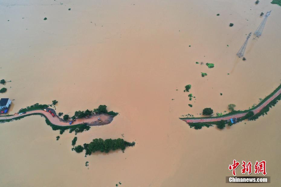 航拍江西鄱阳县问桂道圩漫溃口 决口长约120米