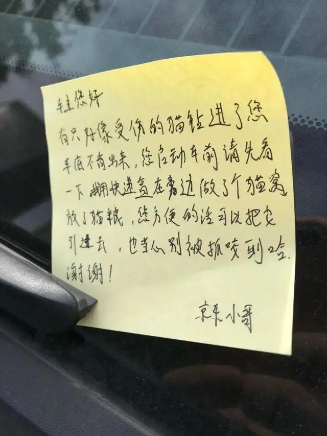 """車主取車時發現被貼""""條"""",原來是……"""