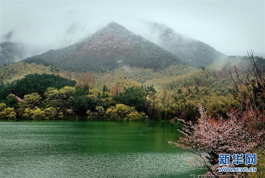 烟雨黄柏山