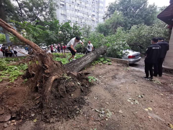 北京七辆因雨而倒下的汽车