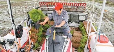 首台北斗高精度自动驾驶插秧机近日正式投入农业生产