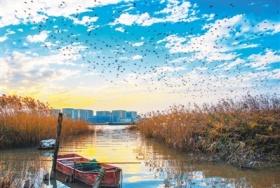 美丽河湖人鱼和谐