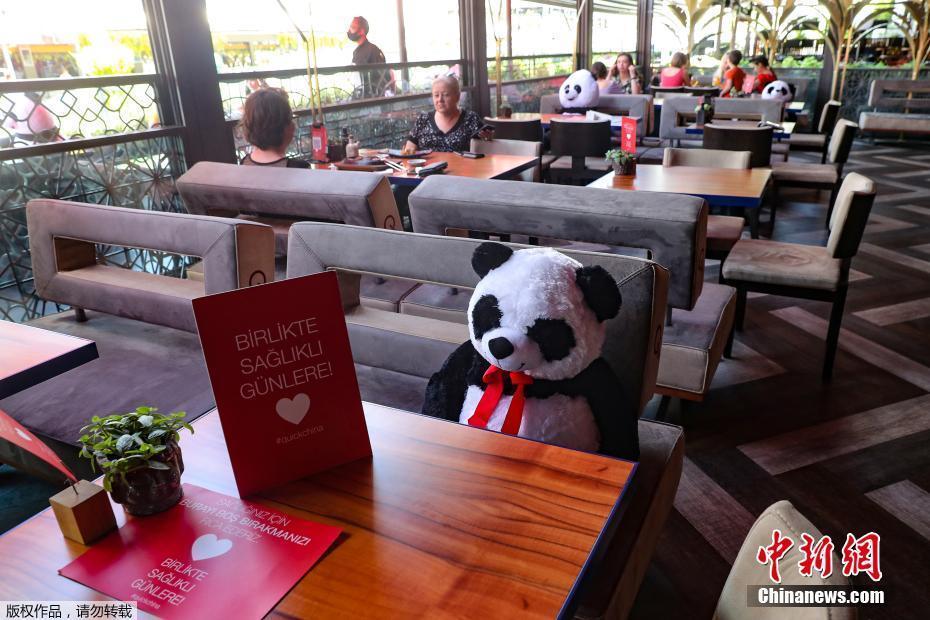 """欧博开户:土耳其餐厅让""""大熊猫""""陪主顾用饭 萌萌哒提醒保持社交距离 第2张"""