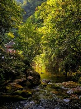 世界自然遗产:神农架,古老的迷一般的山林