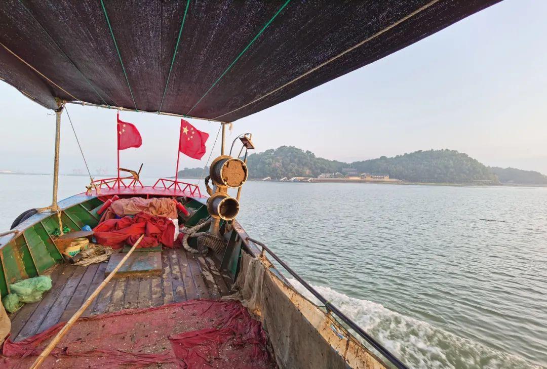 一条大黄鱼卖出1.5万元!背后是他们在海上乘风破浪…