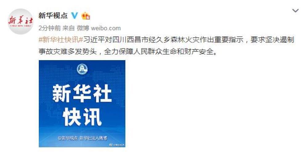 习近平对四川西昌市耐久乡森林火灾作出主要指示