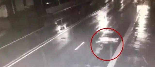和女友吵架赌气,男子仰躺马路中央被撞飞!交警:男子全责