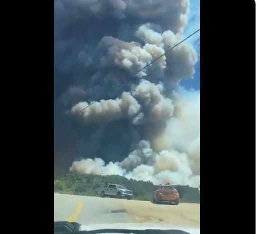 苏州新闻网:美国加州燃起大火现场浓烟滚滚 7800人紧要撤离 第2张