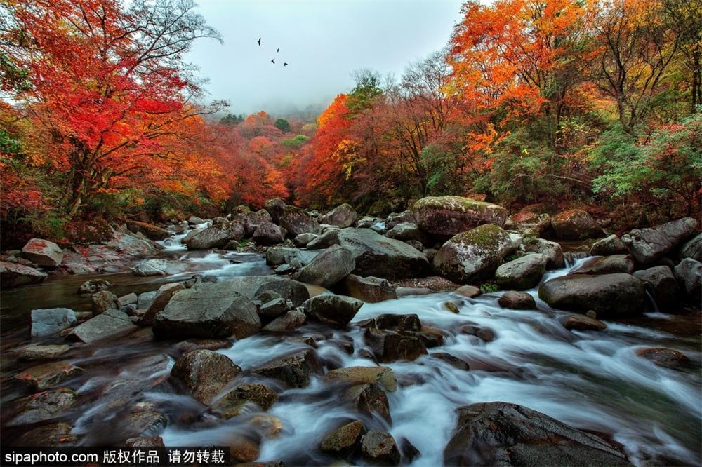 秀美四川光雾山,中国红叶第一山