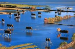 世界的香格里拉文化旅游周系列活动精彩纷呈