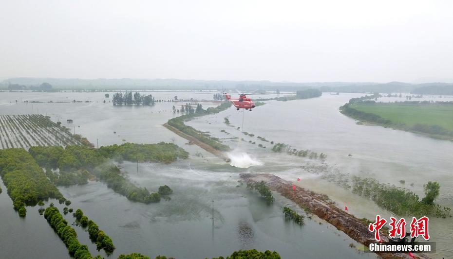 湖北阳新富河溃口处封堵工作有序进行