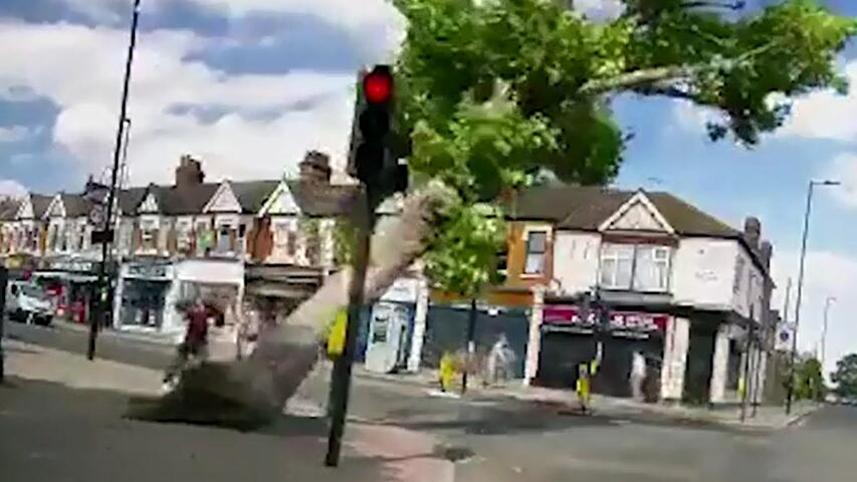 狂风将行道树连根拔起英国一对夫妇险些被砸