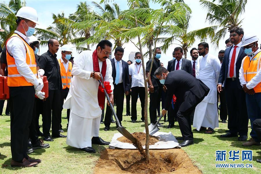 斯里兰卡总理点赞科伦坡港口城建造