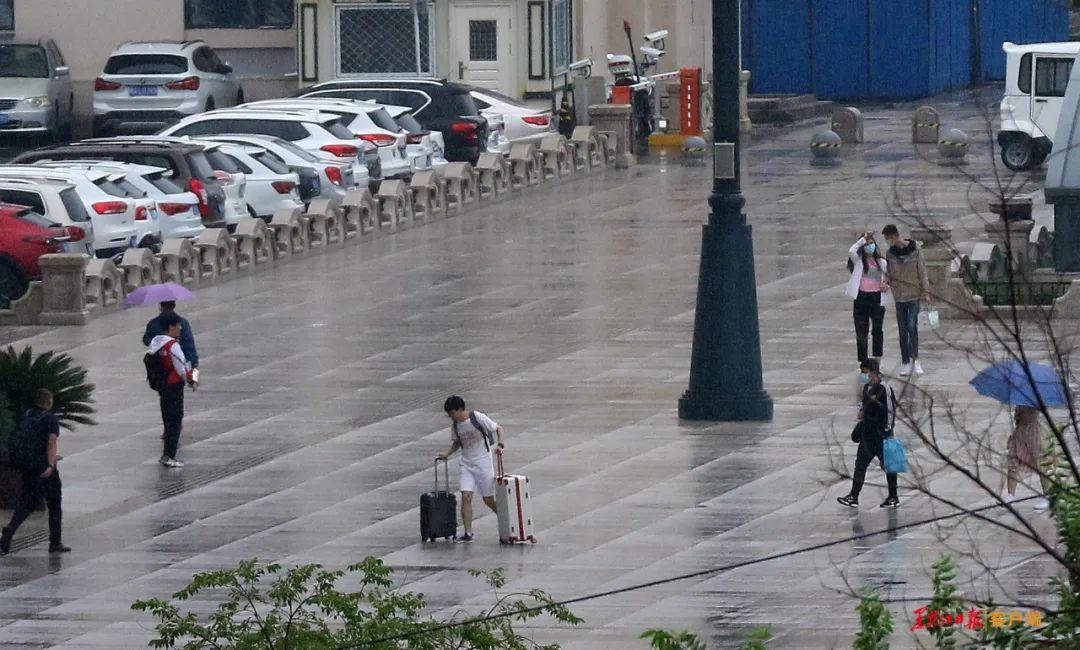 連發四個預警!黑龍江省植物園、省圖書館關閉!公交、航運、公園調整……