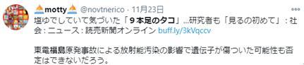 "usdt自动充值(caibao.it):日本沿海惊现9足章鱼,专家称可能与再生能力有关,网友质疑提到""核辐射"" 第4张"