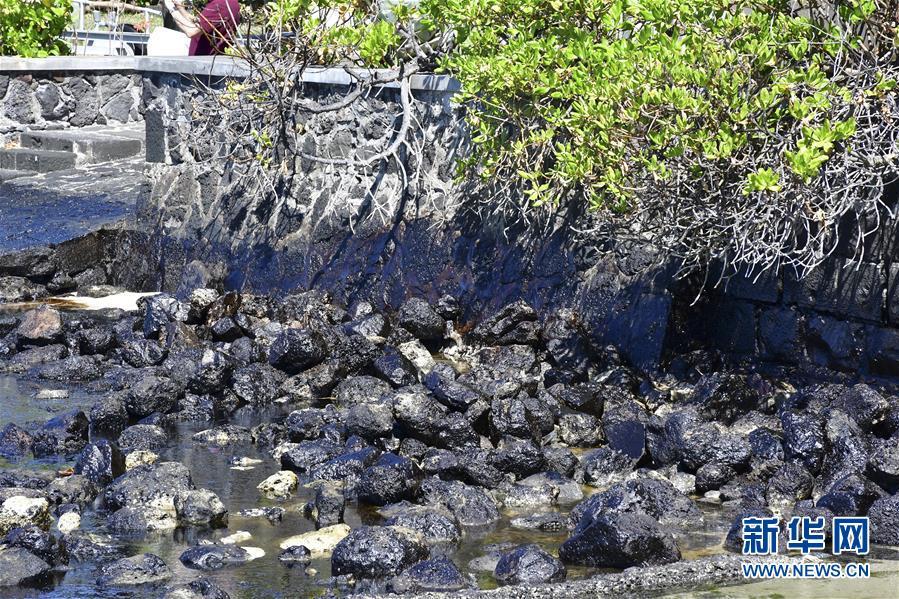 毛里求斯总理称搁浅货船已停止漏油 但船体有进一步破裂风险