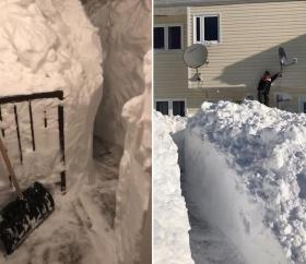 出门太难!加拿大女子花4小时从一米高雪墙中挖路