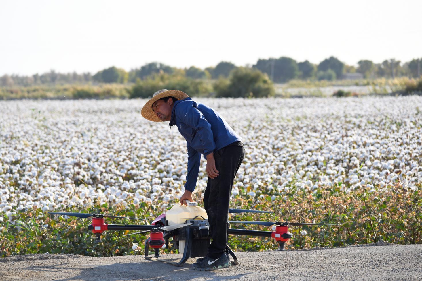 """极飞秋收起""""翼""""带无人机下乡 代替拖拉机幸免棉花减产"""