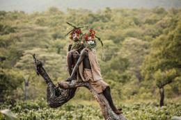狂野神秘埃塞俄比亚