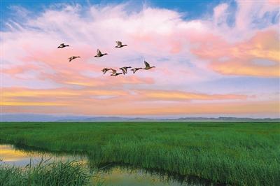 新疆博湖:春风吹暖旅游业