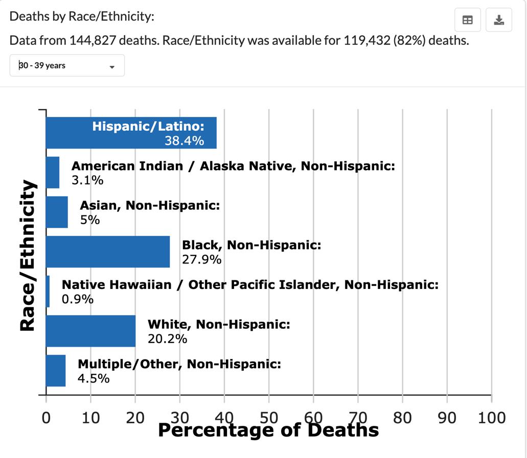 北美考察丨高死亡率 高感染率 美国少数族裔在疫情中受伤最深 第4张