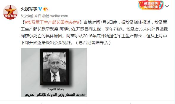 埃及军工生产部长因病去世享年74岁