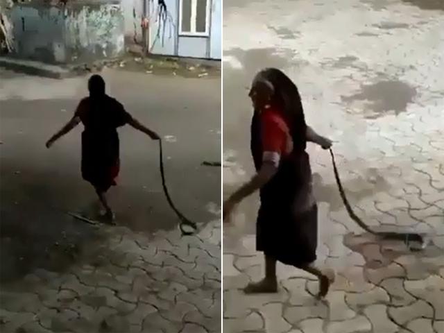 硬核!印度老太太徒手捉眼镜蛇拖拽数十米后扔掉