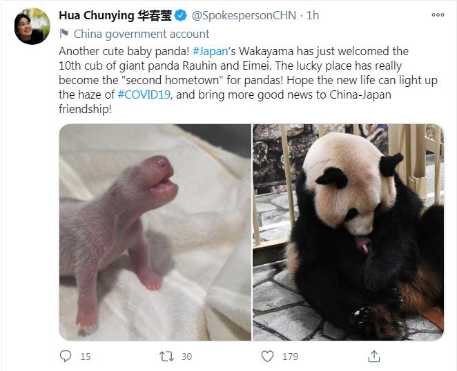 usdt充值接口(caibao.it):又一熊猫宝宝在日本降生,华春莹用英日双语发推送祝福 第2张