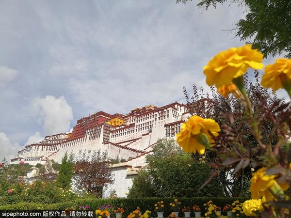 冬游西藏,布达拉宫持续5个月免费参观