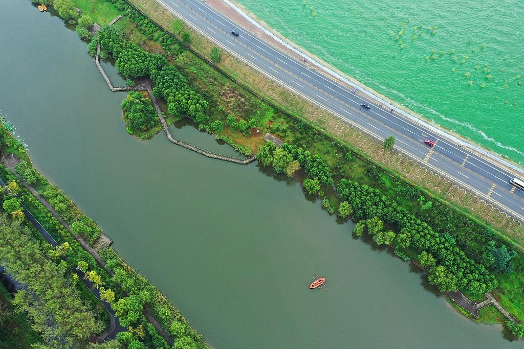 航拍合肥巢湖蓝藻爆发?水面如泼绿漆