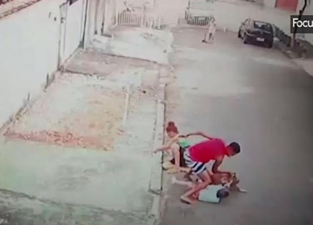 巴西一男子与恶犬搏斗解救被袭击男童被赞英雄