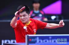 乒乓球男子世界杯:樊振东晋级决赛