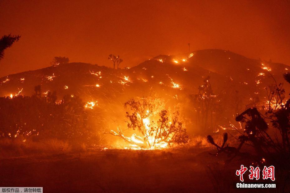 美国山火已烧毁加州330万英亩土地破纪录