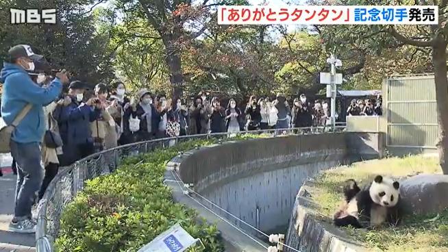 """旅日20年熊猫将回国 日本用这种方式""""让它永远留下"""" 第3张"""