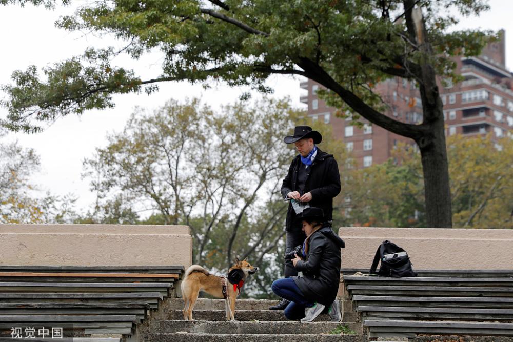 纽约举行万圣节狗狗巡游奇装异服狗狗大派对
