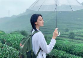张馨予茶山中放松身心