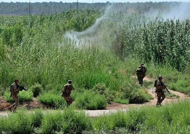 """美军:""""伊斯兰国""""利用新冠疫情加大袭击力度今年4月在伊拉克平均每天袭击22起"""