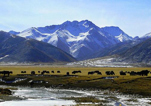 旅游公路为雪山小村带来希望