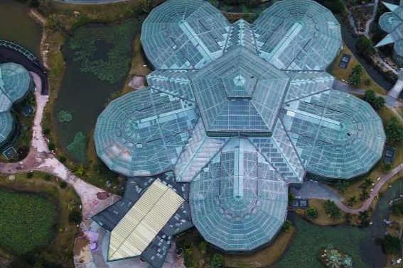 """航拍中科院华南植物园 酷似""""外星人基地"""""""