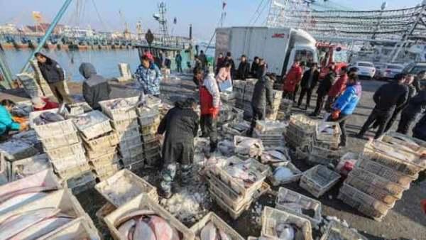 山东荣成:海鲜走俏年货市场