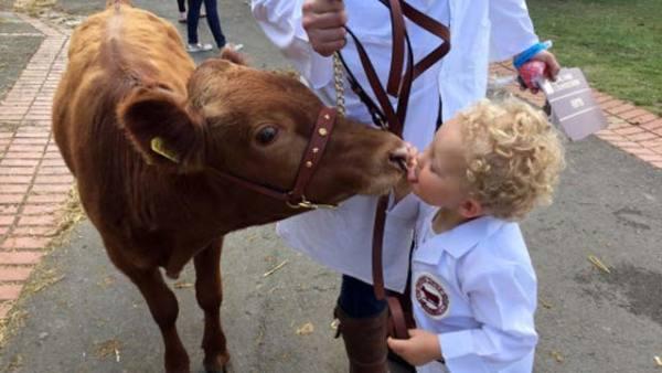 国际接吻日:晒晒人与动物暖心kiss